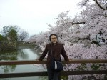 松本城のお堀のサクラは満開&全開! このタイミングに感謝!